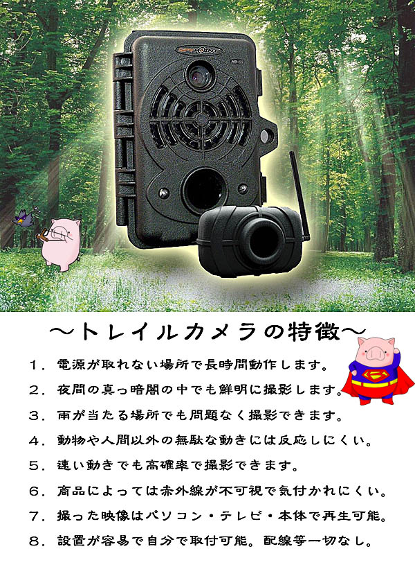 トレイルカメラの特徴