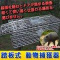 動物捕獲箱 【65cm×23cm×28cm】 トラップゲージ