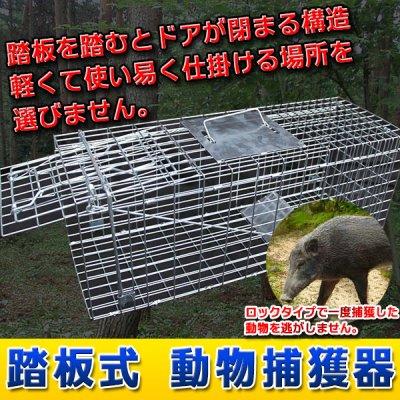 画像1: 動物捕獲箱 【65cm×23cm×28cm】 トラップゲージ